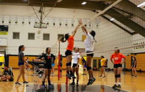 NHIS Girl's Volleyball looks to improve their spike