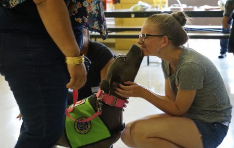 Westside takes steps to help pets in the community