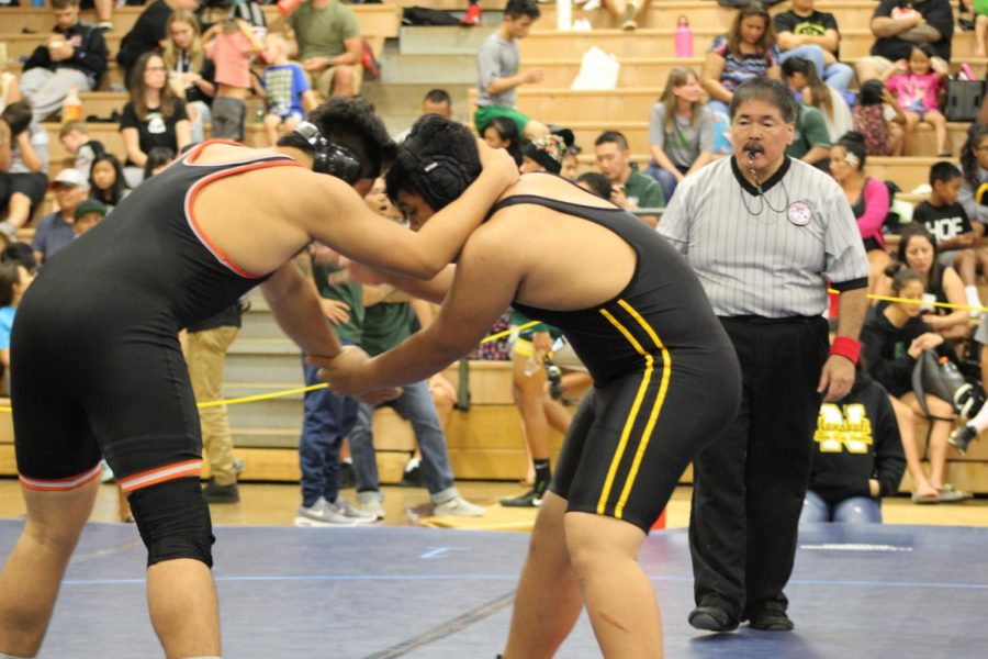 Photography Class: Wrestling OIA Western Division Varsity Championships